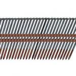 AM2H02-strip-21-nails_2-5