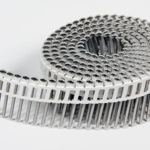 Rolnagels RVS 2.1x45mm (1200st) plastic gebonden